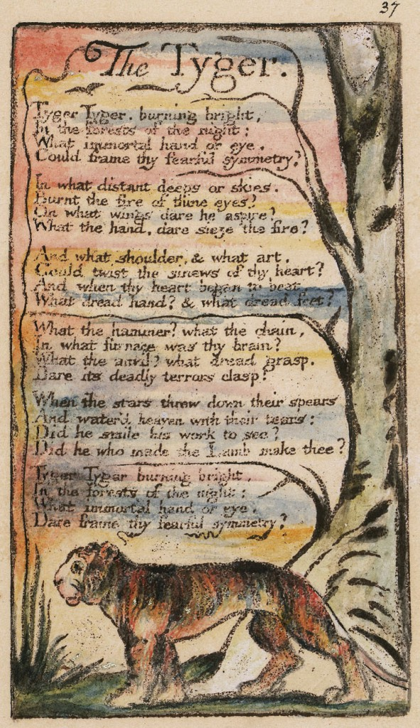 tyger and the lamb Read this english essay and over 88,000 other research documents the lamb & the tyger by william blake the lamb & the tyger william blake вђњthe lambвђќ and.